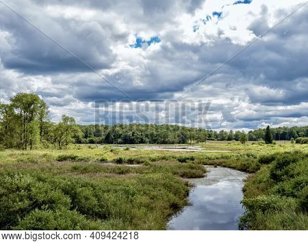 Buzzard's Swamp In Marienville, Pennsylvania, Near Cooks Forest And Clarion, In The Summer With A Di