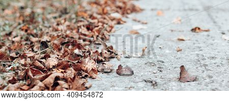 Close Up Of Pile Of Yellow And Red Old Fallen Leaves Near The Park Alley. Horizontal Banner