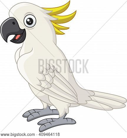Vector Illustration Of Cartoon White Cockatoo On White Background