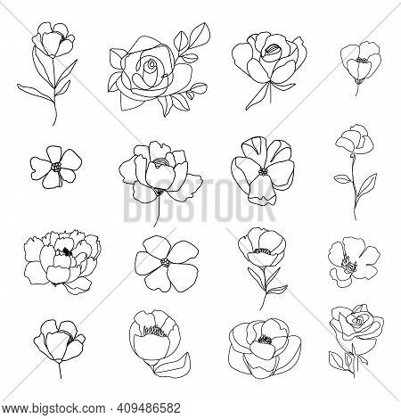 Set Of Linear Various Flower. Floral Botany Collection. Black And White Art. Decorative Elegant Illu