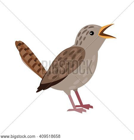 Small Grey Bird. Cartoon Flying Character With Beak And Plumage, Winged Singing Animal Of Sky, Vecto