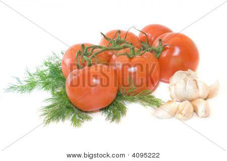 Tomato Vine