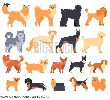 Cartoon Dogs. Cute Sitting Puppies Set Of Various Breed. Doberman, Malamute And Labrador, Poodle And