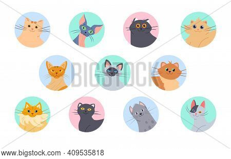 Cats Avatars. Funny Kittens Of Various Breeds, User Profile Images. Isolated Domestic Cat Vector Set