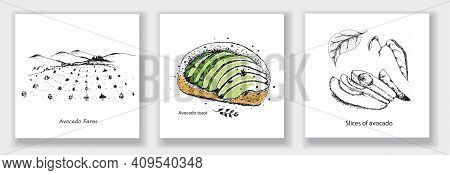 Card With Avocado Farm, Avocado Toast, Slices Of Avocado