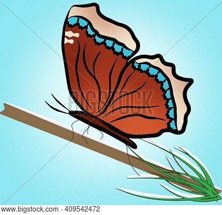 Mourning Cloak Butterfly Illustration with Clipping Path on  Pine Tree Branch Covered in Snow