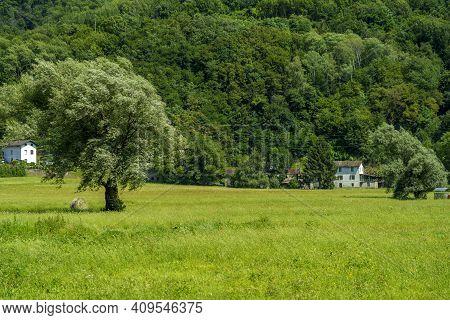 Sentiero Della Valtellina, Sondrio Province, Lombardy, Italy: Landscape Along The Cycleway At Summer
