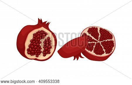 Ripe Pomegranate Fruit With Red-purple Husk And Edible Seeds Inside Vector Set