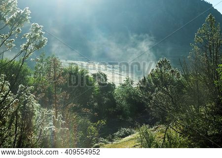 Rising Sun Playing On The Dew-covered Juniper Mountain Forest. Filming In Background Light