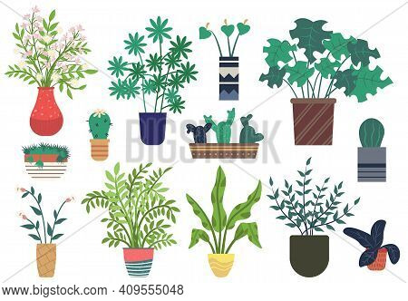 Flowers In Vases, Floral Decor For Home Flat Style Flourishing On Branches, Plant With Frondage, Ten