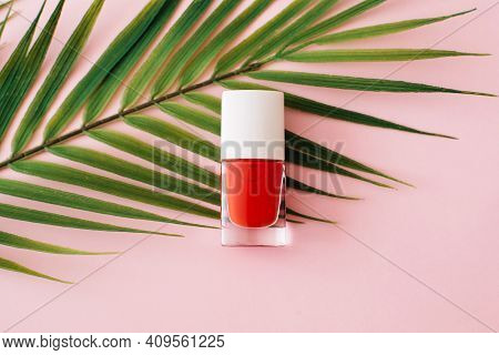 Bottle Of Red Nail Polish And Palm Tree Branch On Pastel Pink Background. Manicure And Pedicure Conc