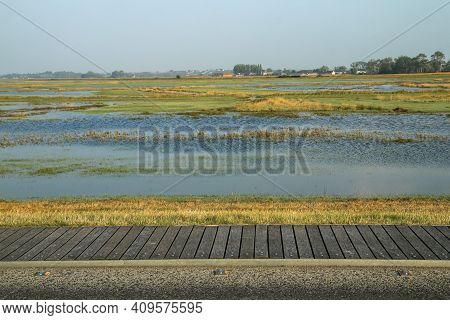 The Detail Of The Tidal Area Which Is Being Flooded By The Sea During The High Tide.