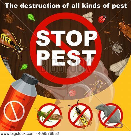 Insects Extermination And Pest Control Banner. Repellent Or Insecticide Aerosol, Locust, Wasp And Ho