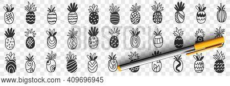Tropical Pineapple Fruits Doodle Set. Collection Of Hand Drawn Fresh Ripe Exotic Fries Pineapples Ta