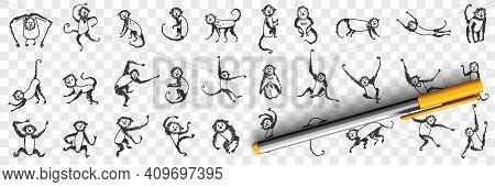 Monkeys Enjoying Life Doodle Set. Collection Of Hand Drawn Monkey Animals Primate Playing Hanging On