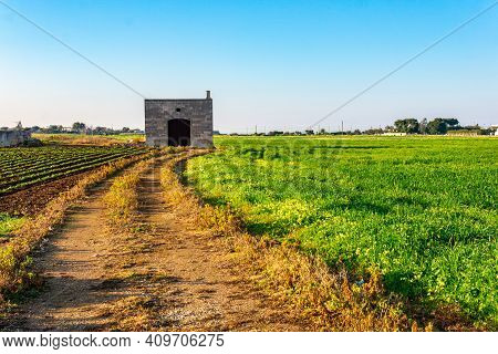 Panoramic View Of A Cultivated Field Of Vegetables With An Old Abandoned Farmhouse In Monopoli (bari