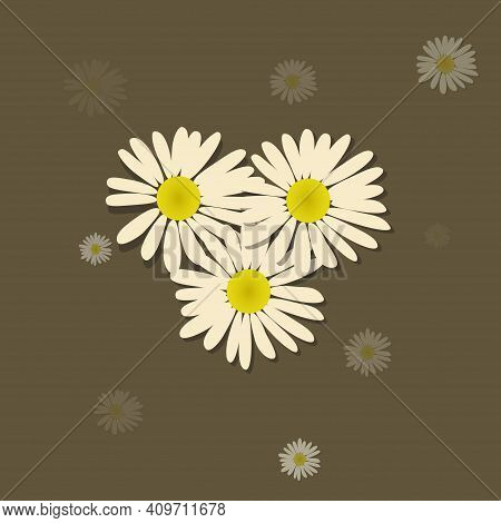 Trio Of Daisy Flowers Over Trending Green Background With Other Random Daisy With Different Transpar