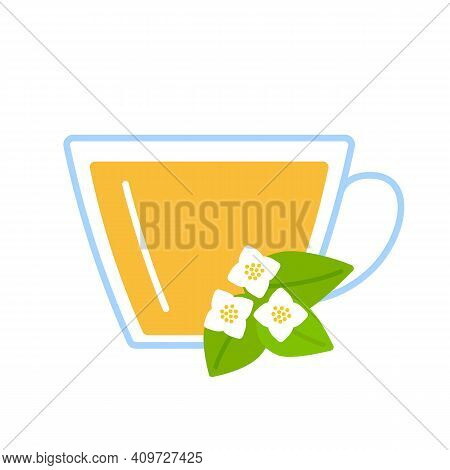 Jasmin Flower Herbal Tea In Glass Cup. Teacup And Infusion Jasmine Relax Herb Drink. Vector Flat Ill