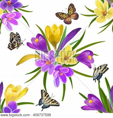 Pattern With Multi-colored Crocuses.multicolored Crocuses And Butterflies On A White Background In A
