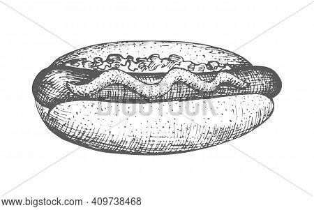 Hotdog Hand Drawn. Vector Illustration Of A Vintage Hotdog Sketch Hand Drawn Isolated On A White Bac