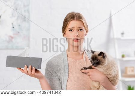 Displeased Woman Holding Box With Napkin And Siamese Cat At Home.