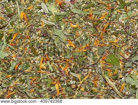 Various Dried Herbs, Alternative Medicine. Healing Herbs Background, Flat Lay,