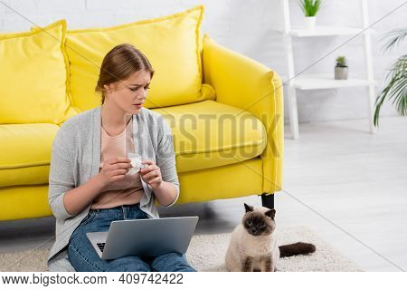 Sad Freelancer Holding Napkin During Allergy And Looking At Siamese Cat On Carpet.
