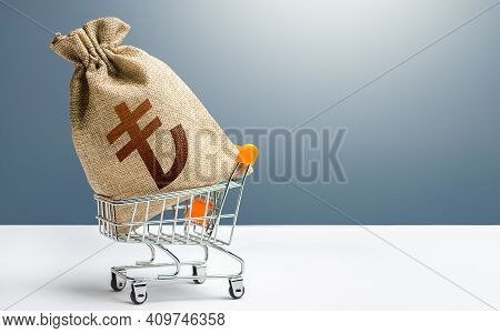Turkish Lira Money Bag In A Shopping Cart. Public Budgeting. Profits And Super Profits. Economic Bub