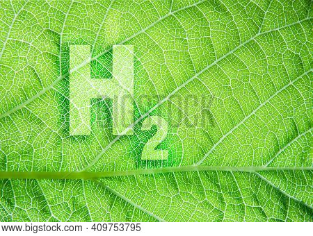 Green Hydrogen Energy Symbol On A Leaf Texture. Ecological Concept