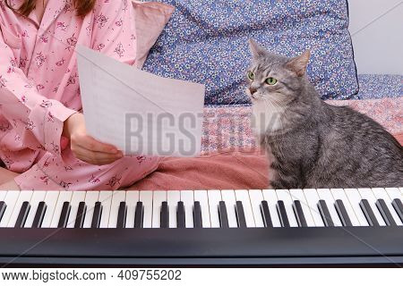 A Cat Looks At Sheet Music On A Piece Of Paper, Writing Music By A Composer At A Digital Piano