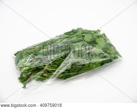 Fresh Green Bunch Of Coriander In A Transparent Bag On A White Background