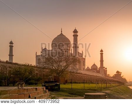 Sunset View Of The Taj Mahal With A Monkey On The Ghats At The Banks Of The Yamuna River In Agra