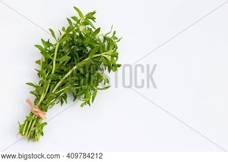 Fresh Paddy Rice Herb On White Background.