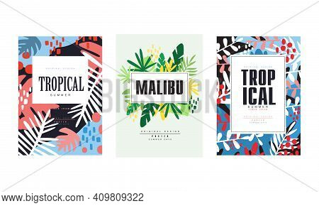 Tropical Summer Banner Templates Set, Malibu Poster, Card, Background, Flyer, Invitation With Tropic