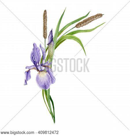 Wild Spring Flowers, Forest Blossoms, Elegant Arrangement On White Background. Wedding Invitation Ba