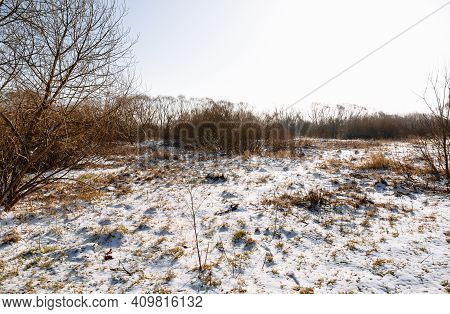 Land Plot Reclamation For Property Development. Sale At Auction. Commercial Building. Leveling, Addi