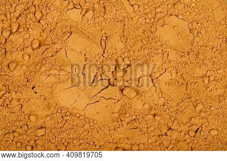 Yellow Curcuma (curcuma Longa) Or Turmeric Powder Background. Top View. Spice And Medicinal Herb Con