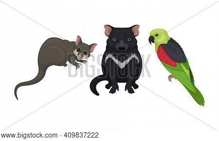 Tasmanian Devil And Sugar Glider As Australian Animals Vector Set