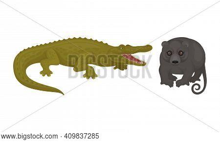 Crocodile And Possum As Australian Animals Vector Set