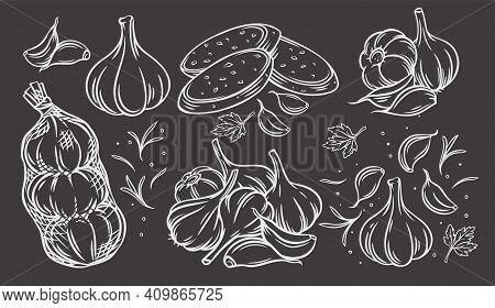 Garlic Outline Drawn Monochrome Icon Set On Blackboard. Engraved Drawn White On Black Pile Of Garlic