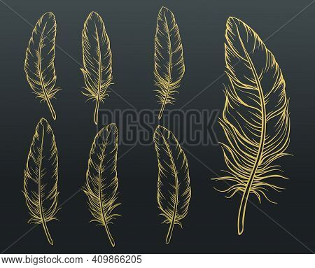 Sketch Feathers Set. Golden Hand Drawn Bird Feather On Black Background. Vector Illustration