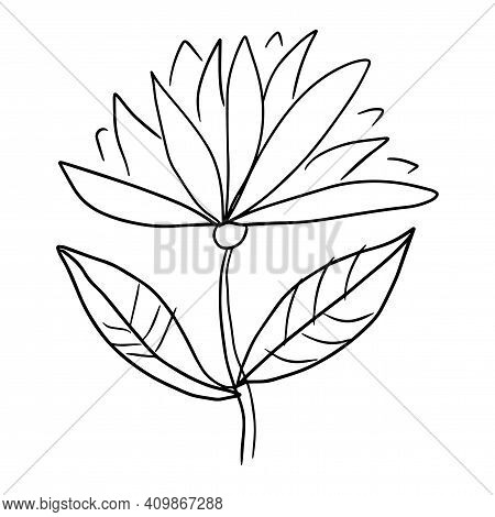 Colorful Fantasy Doodle Cartoon Flower Isolated On White Background. Vector Illustration.