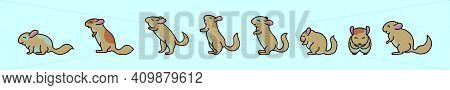 Set Of Chinchilla Cartoon Icon Design Template With Various Models. Modern Vector Illustration Isola