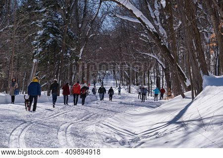 Montreal, Ca - 4 February 2021: People Walking Or Skiing On A Snowy Trail In Montreal\'s Mount Royal