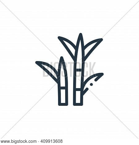sugar cane icon isolated on white background from in the village collection. sugar cane icon thin li