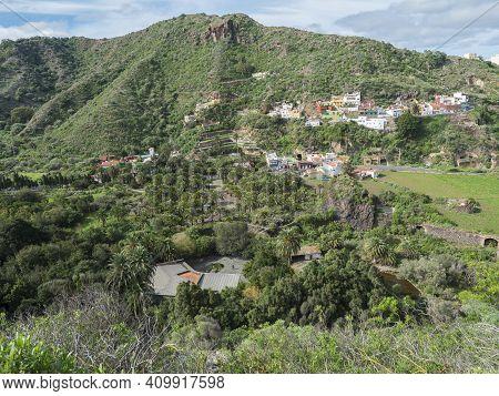 View Over Green Hill And Valley Of Botanical Garden, Jardin Botanico Canario Viera Y Clavijo, Tafira