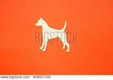 White Dog On An Orange Background. Dog Walking