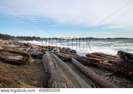 Driftwood Covered Beach At Coburg Peninsula In Colwood, British Columbia On Vancouver Island