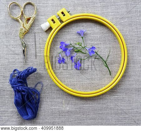 Materials For Embroidery: Scissors, Canvas, Thread And Embroidery Frame. Small Blue Lobelia Flowers