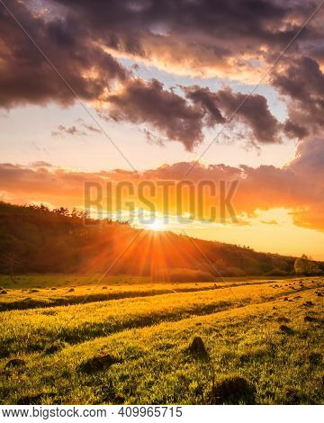 Sunset Or Sunrise In A Spring Field With Green Grass, Willow Trees And Cloudy Sky.